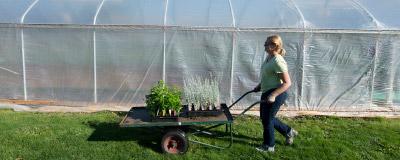 Horticulture CC